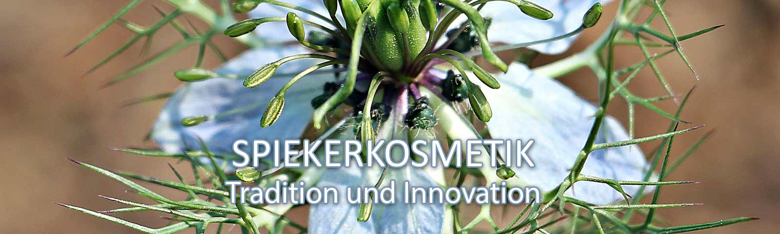 SPIEKERKOSMETIK Tradition und Innovation